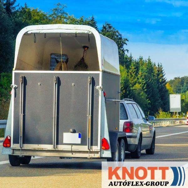 Hasznos tippek lószállító utánfutó választáshoz – 1. rész Autóflex-Knott